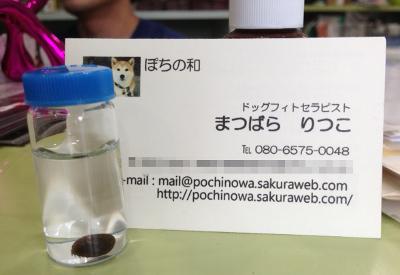 20140713_6.jpg