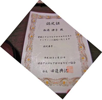 20170411_1.jpg