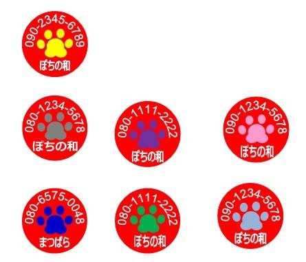 同行避難_肉球の色.jpg