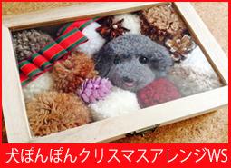 犬ぽんぽんクリスマスアレンジWS.jpg