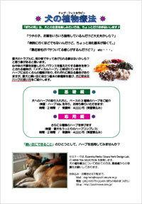 blog_201306.jpg