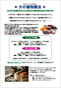 dog_phytotherapy_poster.jpg