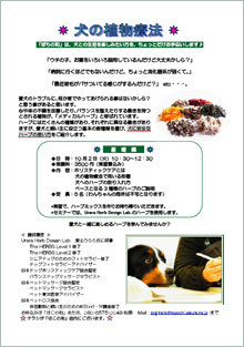 dogherb_kiso.jpg